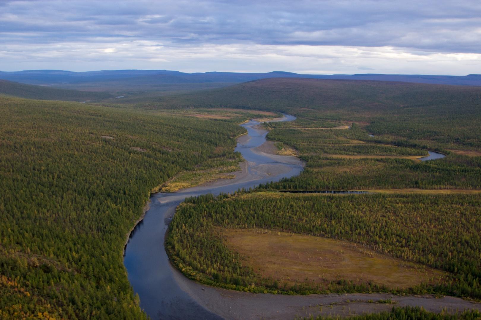 река Большая Романиха