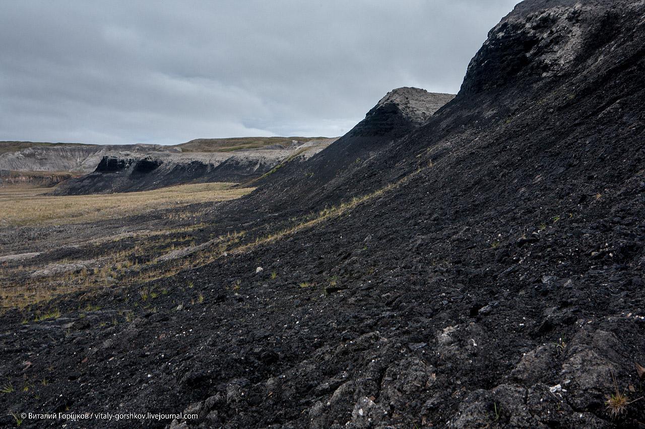 Слои каменного угля