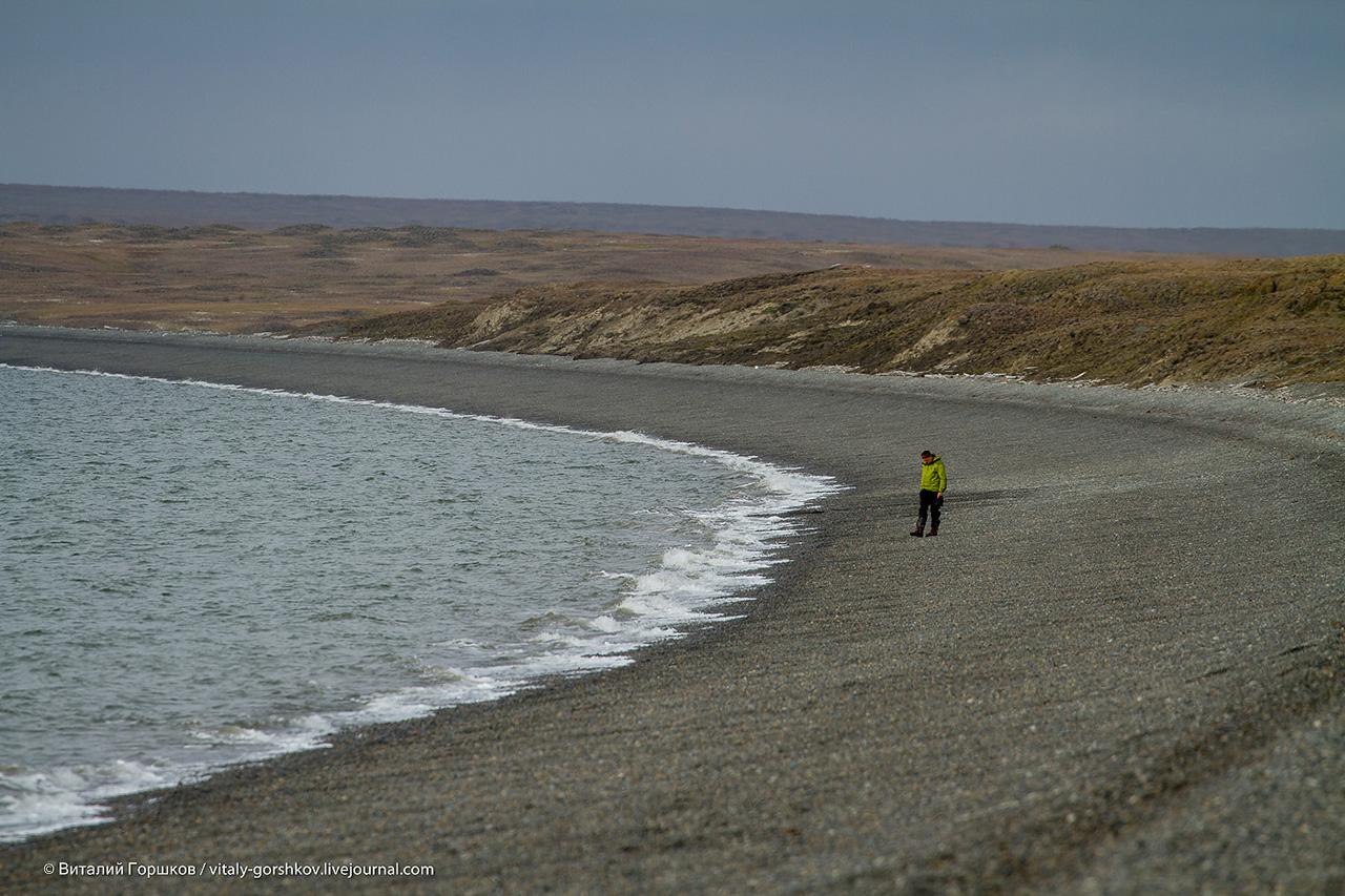 берег моря Лаптевых